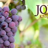 John15-1-8
