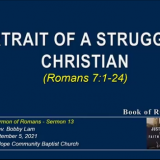 Portrait of a Struggling Christian